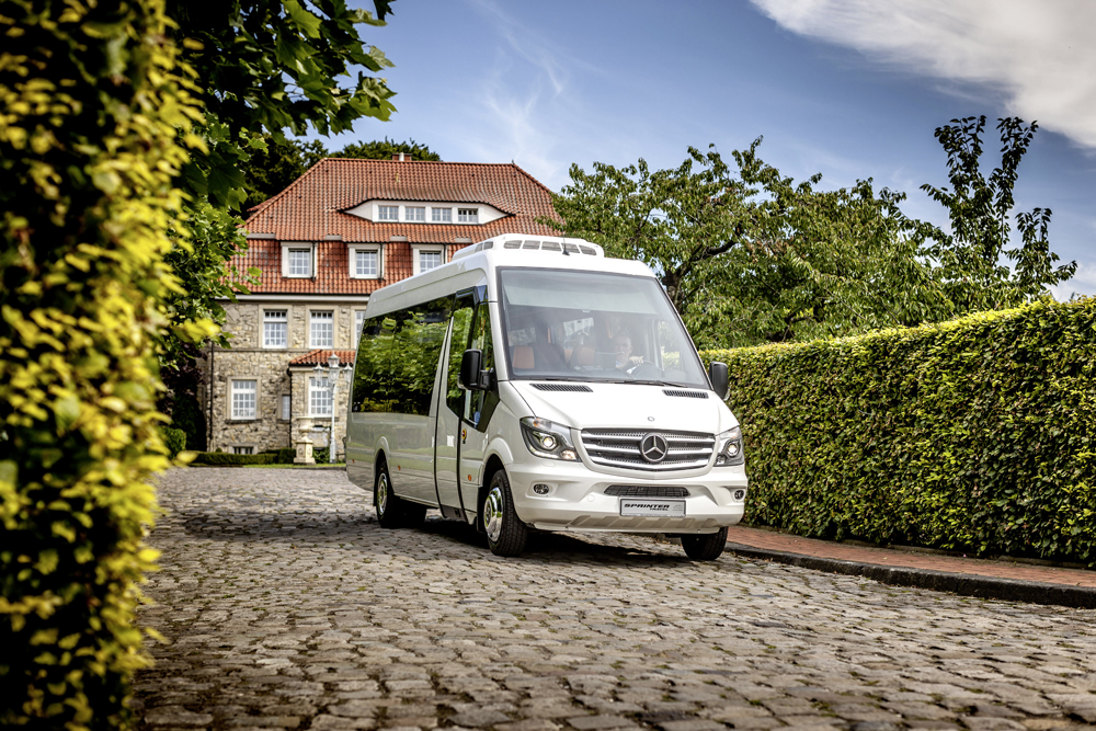 new sprinter travel 65
